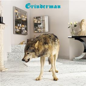 A gray wolf stands in the middle of a modern bathroom.