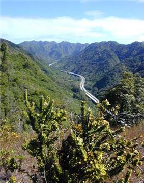 Interstate H-3 in Halawa Valley looking towards the Ko'olau crest