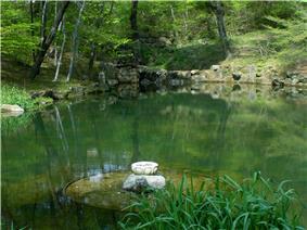 Haeinsa-monastery-pond-of-reflection.jpg