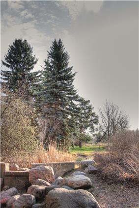 Hawrelak Park in the North Saskatchewan River Valley taken from a stream-bed.