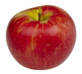 The Honeycrisp apple, Minnesota's state fruit