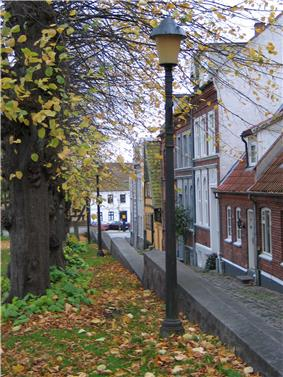 Street in the old town