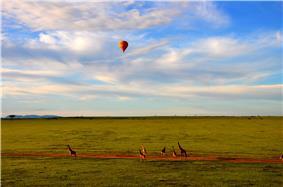 Hot Air Balloon Safari in Maasai Mara