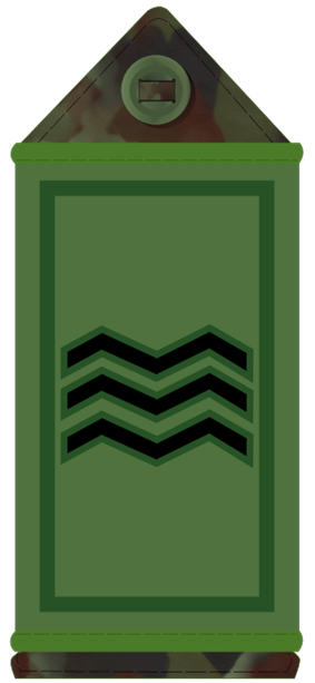 Irish Army sergeant's rank slider
