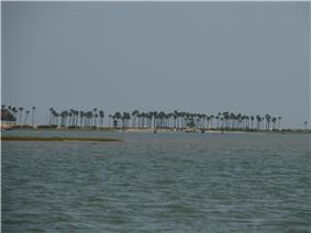Barrier Islands separating Pulicat lake from Bay of Bengal