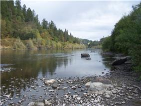 A wide placid river flows through the woods.