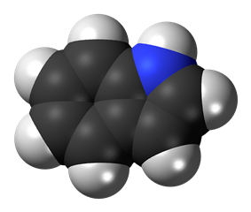 Space-filling model of indole