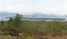 Low trees and bushes in the foreground give way to a body of water with a large wooded isle close to the shore and smaller islets beyond. There are mountains in the distance.