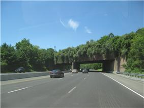 A six lane freeway in a wooded area with an overpass containing trees