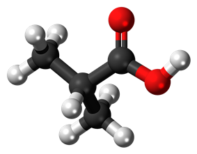 Ball-and-stick model of the isobutyric acid molecule