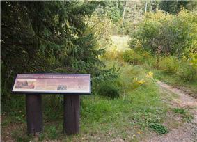 Itasca Bison Site