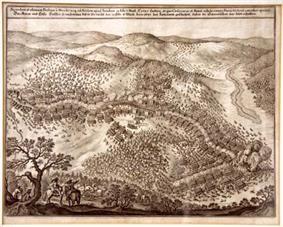Battle of Jankau