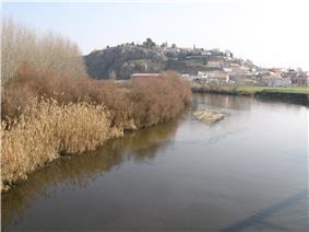 The Jarama river at Titulcia.