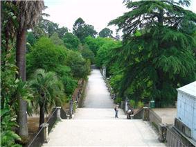 Jardim Botânico de Coimbra2.jpg