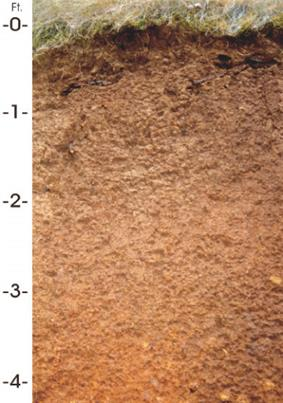 Cross-section of four feet of reddish-brown soil