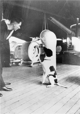 A dog sitting on the deck of a ship, being spoken to by a man in a military uniform
