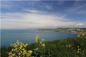 The Jurassic Coast west of St Aldhelm's Head