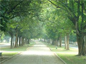Kadma-Sonari Link Road