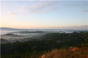 Kakamega Forest sunrise