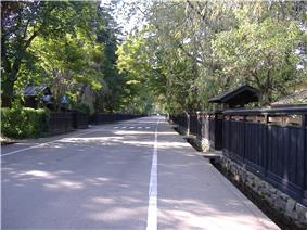 A street lined by wooden plank fences and small wooden gates.