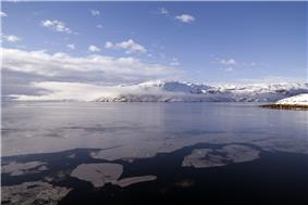 Fjord icefloes, view from Kangilinnguit