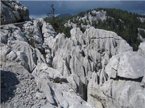 Vertically-cracked grey rock