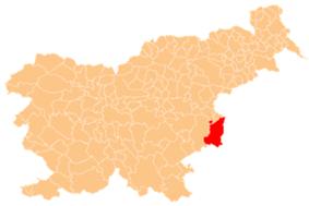 Location of the Municipality of Brezice in Slovenia