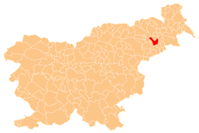 The location of the Municipality of Ptuj