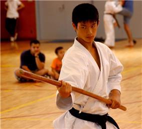 Kobudōka using the weapon Bo