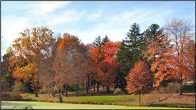Kenilworth Park.