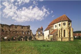 Ruins of the Cărţa Monastery