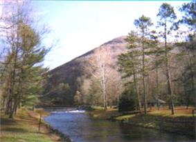 A stream flows between several trees with a pyramidal-shaped mountain in the background