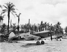 Two propeller aircraft parked on a crushed coral surface. In the background is a coconut plantation