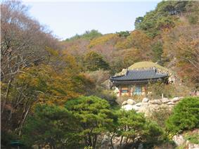 A distant view of a wooden shrine surrounded by a thick forest on the slopes of a mountain in autumn.