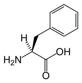 Skeletal structure of L-phenylalanine