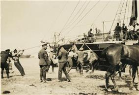 A group of men unloading a horse from a ship thorough the use of a sling. Another horse is partially visible, while other men watch from the ground and the deck of the ship.