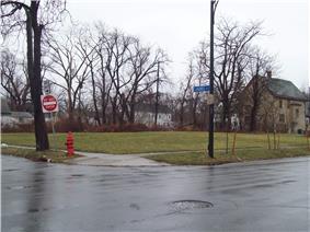 Laurel and Michigan Avenues Row