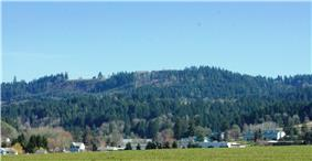 View from the west with Chehalem Mountain in the background