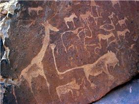 A dark brown sandstone slab littered with rock engravings in light brown. The engravings all show African animals, with a large giraffe on the left. At the centre is a fantasy creature of a lion with human toes and an impossibly long tail. At the tip of the tail there is a pugmark with six toes.