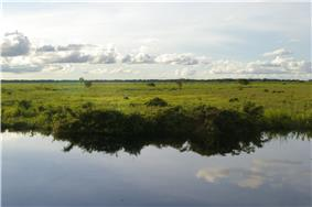 Llanos of Beni