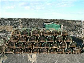 Lobster pots stand on top of each other, in four rows of 6, 7, 8 and 9, respectively. Each has a wooden base and a metal hoop at either end and a crossbar, which collectively hold up a cover of netting.