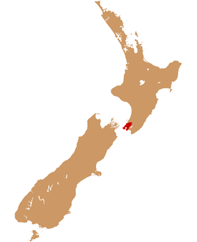 Wellington urban area within New Zealand