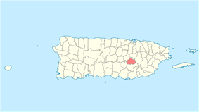 Location of Cidra in Puerto Rico