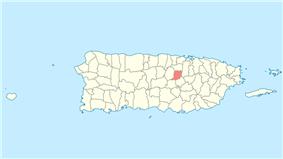 Location of Naranjito in Puerto Rico