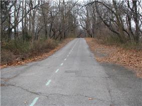 Long Island Motor Parkway