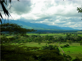 The Llanos in Colombia.