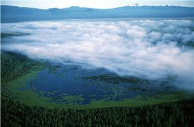 Light fog covering most of the lake and its algae blooms, surrounded by coniferous forest on all sides and sharp-pointed Mount Thielsen and neighboring snowy peaks in the distance