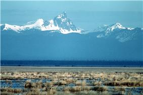 Flat wetlands of brown grass with snowy peaks in the background