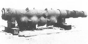 Accelerating gun (1881)