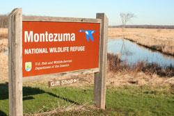 Photograph of a sign that reads Montezuma National Wildlife Refuge. The background shows a waterway and brown fields.